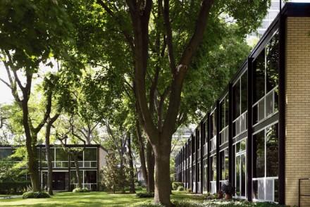 lafayette-park-house-exterior-trees
