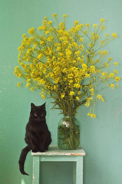 flower-inspiration-miluccia-003