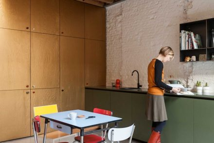 maison de ville-dries otten-anvers-design-renovation-made architects