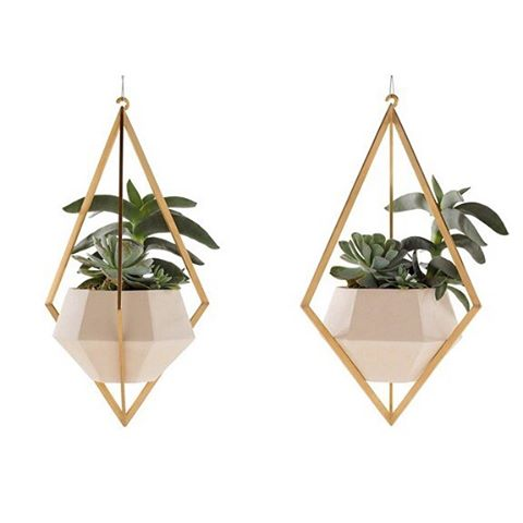 Plantes suspendues By farrahsit urbangarden hangingplants greenmood urbanjungle